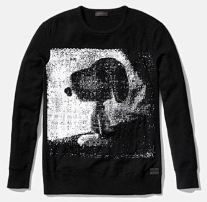 Coach X Peanuts snoopy sweater